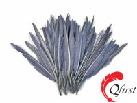 Hot selling plumage wholesale dyed silver gray duck pointer wing feathers for sale