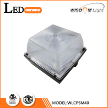 High quality Polycarbonate lenses 40w high quality gas station led canopy light