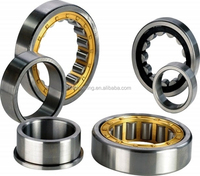 cylindrical roller bearings N204E