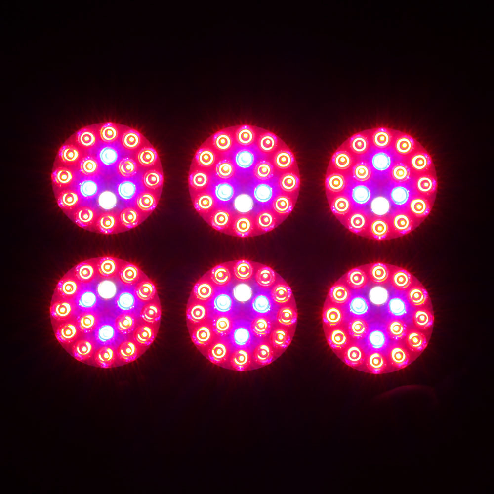 Spider Apollo 6 Full Spectrum Eshine Systems 300Watt Cheap LED Grow Lights For Indoor Plants