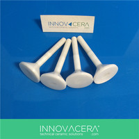 Insulation Zirconia/Alumina Ceramic Bolt/INNOVACERA