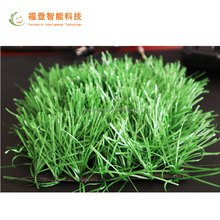 Tennis Court and Football Artificial Grass.Landscape Synthetic Grass.Sports Artificial Turf
