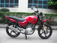unique street legal 125cc motorcycles sale YBR125 HL125-G