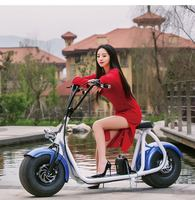 china yongkang factory Pleasedin the most fashionable citycoco 2 wheel electric scooter, adult two wheel electric motorcycle