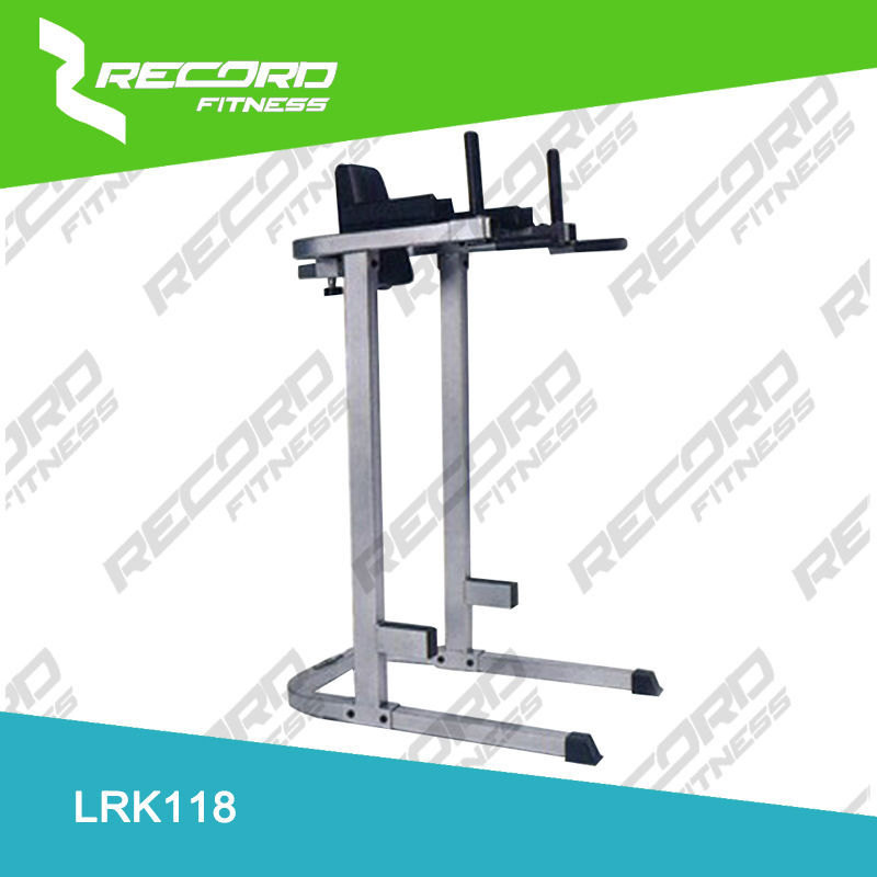 vertical knee raise / dip /high quality dip/fitness equipment