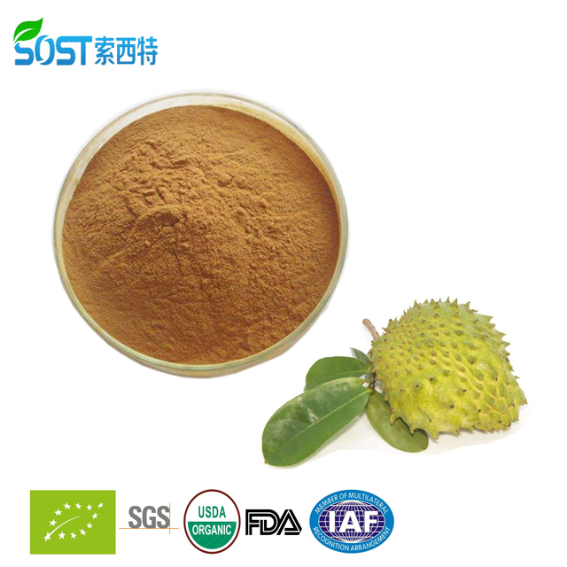 High quality natural herbal extract soursop leaves extract