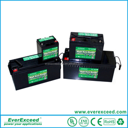2016 high quality EverExceed ISO 9001 High Rate agm battery 6v/battery 12v