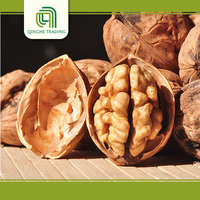 cheap shelled black walnuts for sale with great price