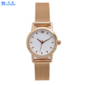 HOT! Classic watch with Mesh strap Custom Logo Japan Movement ladies Watch
