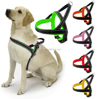 Neoprene Padding XX Light Up Dog Harness With Reflective Belt