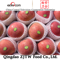 Apple Type and Pome Fruit Product Type fresh apple fruit