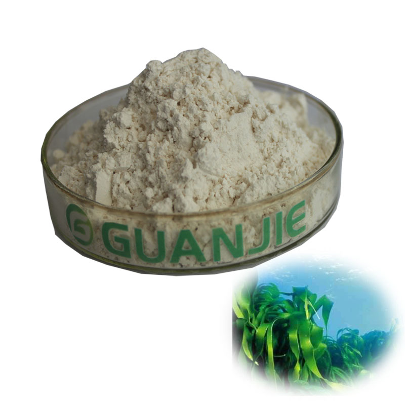 High Quality Factory Price Laminaria Japonica Extract Fucoxanthin 5% 10% 40% 50%