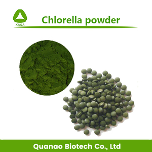 Natural nutritional supplement Chlorella powder in bulk wholesale
