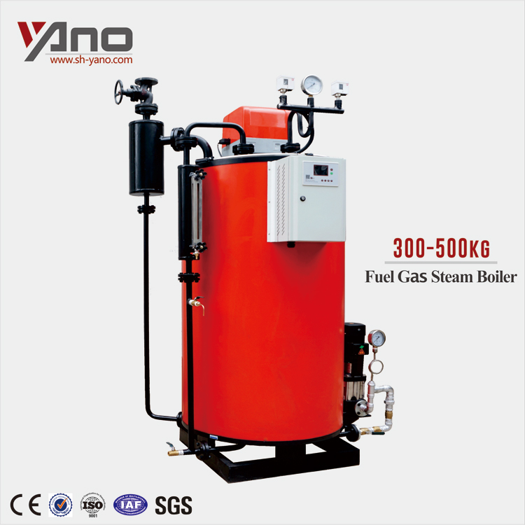 300/400/500kg Industrial Gas Steam Dryer Used Water Tube Boiler