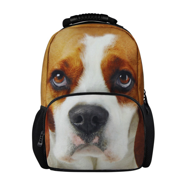 2015 Latest Designs boy school bags,low price school bags,backpack bags for high school girls