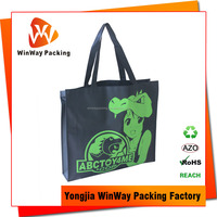 Light Weight Reusable Non Woven Bag with Logo