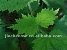 Natural High Quality Smartweed Extract Powder