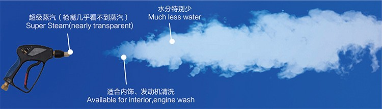 HF1090Plus Waterless Steam Car Wash Machine