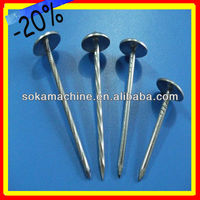 Best products galvanized umbrella head roofing nails (factory) with plastic washer / Roofing Nail China Factory