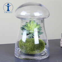Wholesale Manufacturer Eco-Friendly Food Container Plant Decoration Mushroom Shaped Glass Storage Jar With Lid