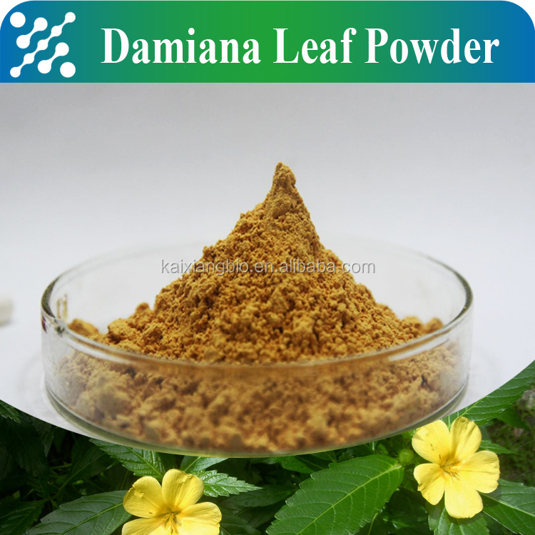 Herbal extract Damiana extract/damiana leaf extract 4:1/damiana