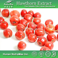 100% Natural Hawthorn Berry Extract /Hawthorn Fruit P.E