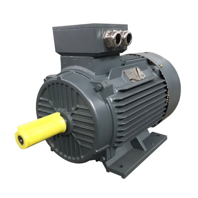 Synchronous direct drive shutter hair dryer <strong>Y2</strong> Series 3 Phase Hydraulic Power dc <strong>motor</strong> for treadmill driver winding 2018 NEW