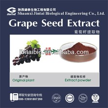 Vitis vinifera L OPC 95% natural grape seed extract powder