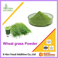 10:1 Factory Price Natural Wheatgrass Wheat Grass Juice Powder