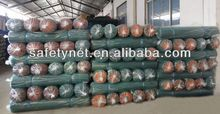 Plastic Scaffold Safety Net used in Construction /safety net mesh sheet