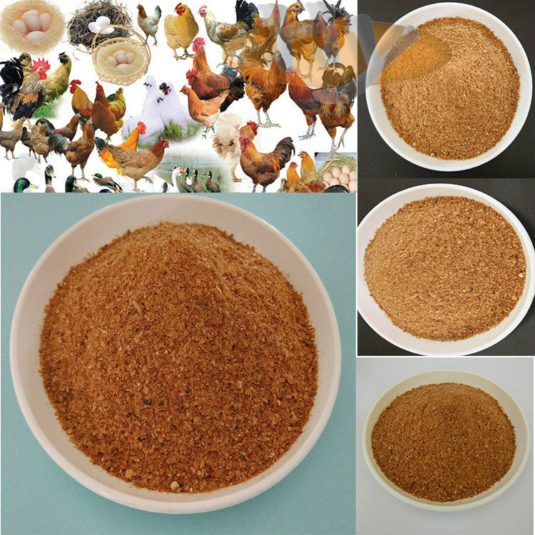 China wholesale feed wheat for sale/rice protein ddgs