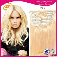 2015 Chirstmas New Hair Light Color For Choosing Clip In Hair Extensions For White Women