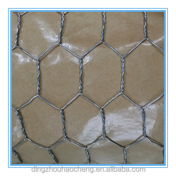 Galvanized square hexagonal decorative chicken wire mesh