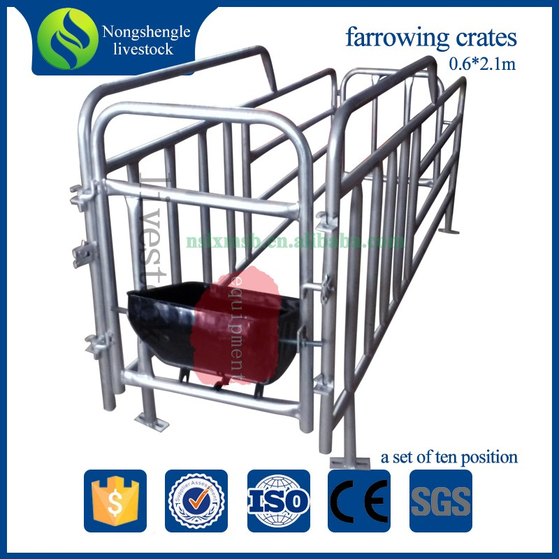 Pig farm equipment gestation crate sow cage for sale