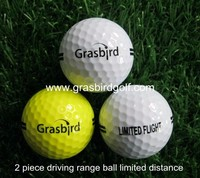 Customize limited flight golf ball 2 layers driving range ball white
