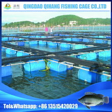 8mx8m Aquaculture Square Fish Farming Cages Floating Net for Tilapia