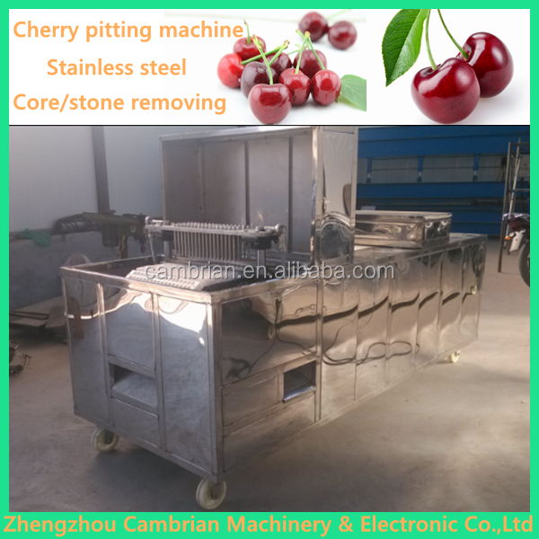Large diameter 40mm fruit pitter fresh olive pitting machine with lowest price