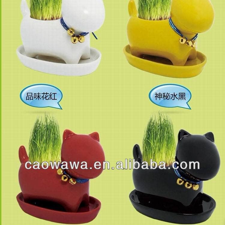 lovely cat and dog grass dolls Zakka, mini flowerpot gardening, potted bonsai promotion gifts