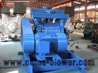 Low vibration vacuum pumps , liquid ring vacuum pump