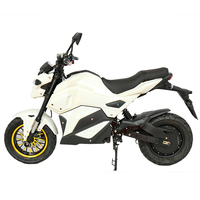2 Wheel 3000W Off Road Powerful Electric Motorcycle