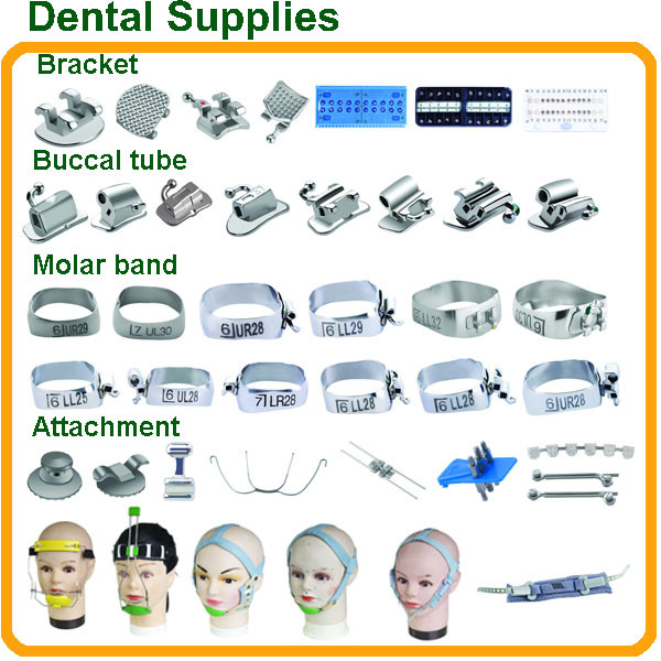 Dental Equipment Names/Orthodontic Brackets Buccal Tubes Molar Bands Pliers / Dental Brand Names