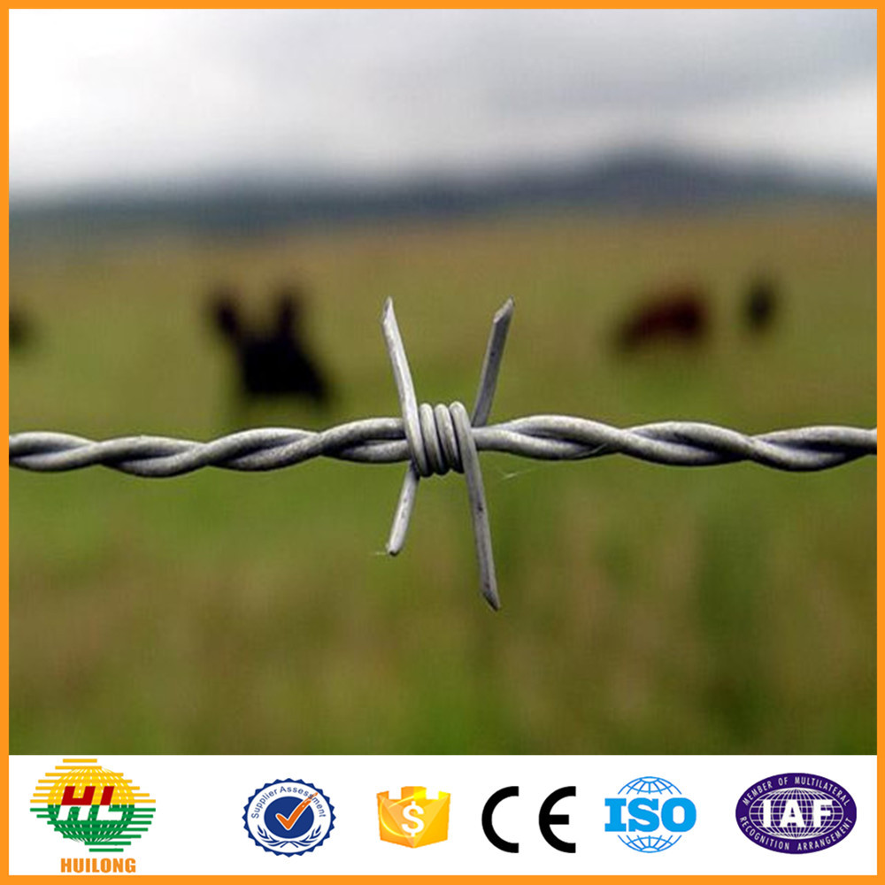 Barbed Wire Weight Per Meter Drawing Razor Wire In Kenya