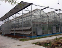 Polycarbonate Agriculture Greenhouse for Tomato