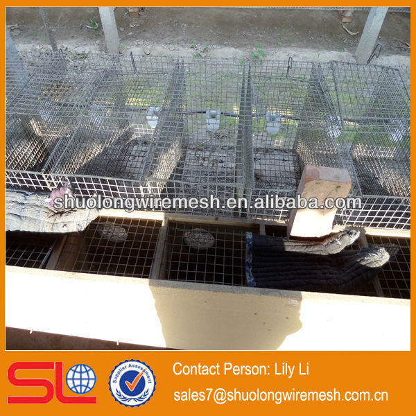 Chinese steel welded rats and mice cage /hebei cheap mouse cage