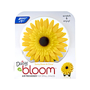 Bright Air Daisy In Bloom Air Freshener Sunny Bloom & Citrus 6 Packs (14840-01026)