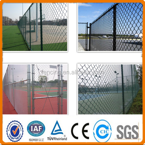 Anping factory Chain link fence/Hook flower nets