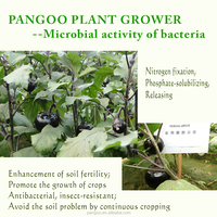 Beneficial microbes as plant growth promoter
