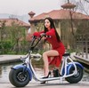 the most fashionable citycoco 2 wheel electric scooter, adult two wheel electric motorcycle