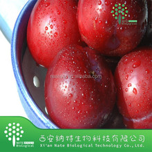 100% Nature Dried Plum powder extract