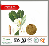 Wholesale Cosmetic Grade Magnolia Bark Extract Powder with 90% Honokiol 45% Magnolol